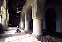 Photo of صوفی های سلفی را بشناسیم/ بنیان های اعتقادی جماعت تبلیغ