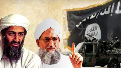 Photo of بررسی تطورات گفتمانی سلفیت جهادی؛ جهادیها دموکراتیکتر شدهاند!