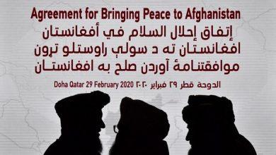 Photo of اسب چموش صلح در افغانستان