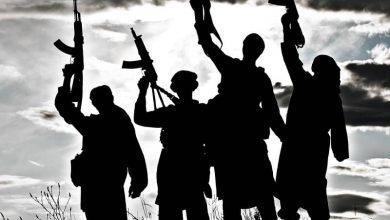 Photo of بررسی سلفیهای افغانستان؛ ریشه در خلیج و پاکستان شاخه در شرق افغانستان
