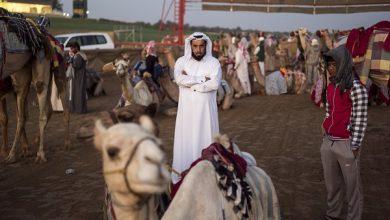 Photo of نگاهی به نظام عشیرهای کشورهای خلیج فارس؛ خلیج فارس مدرن همچنان عشیرهمحور است
