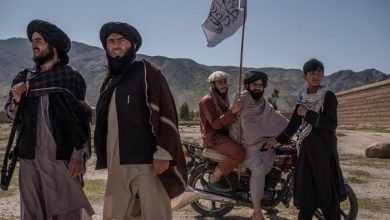 Photo of نقدی بر اظهارات جدید دکتر احمد نادری؛ طالبان طبق نظریه آلن تورن هم اصیل نیست